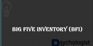 BIG FIVE INVENTORY (BFI)