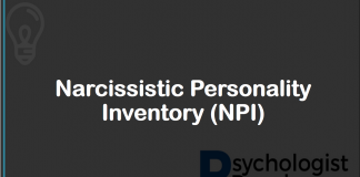 Narcissistic Personality Inventory (NPI)