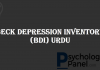 Beck Depression Inventory (BDI) Urdu